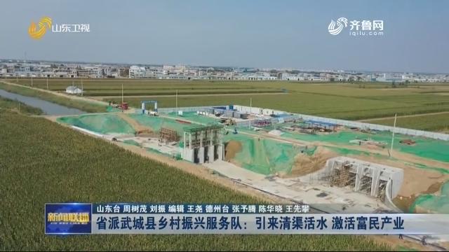 省派武城县乡村振兴服务队:引来清渠活水 激活富民产业