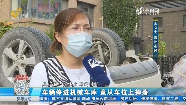 青州:车辆停进机械车库 竟从车位上掉落