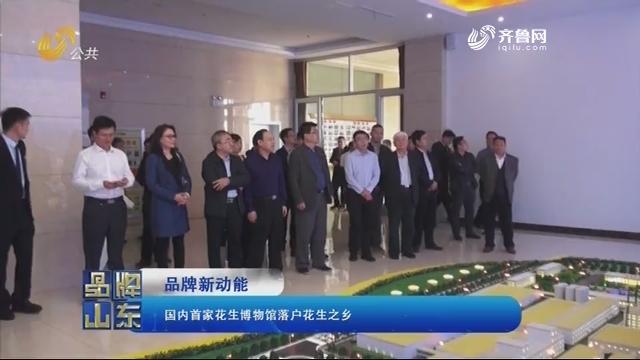 【品牌新动能】国内首家花生博物馆落户花生之乡