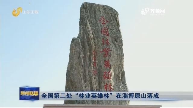 """全国第二处""""林业英雄林""""在淄博原山落成"""