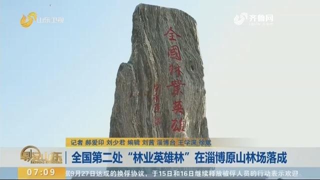 """全国第二处""""林业英雄林""""在淄博原山林场落成"""