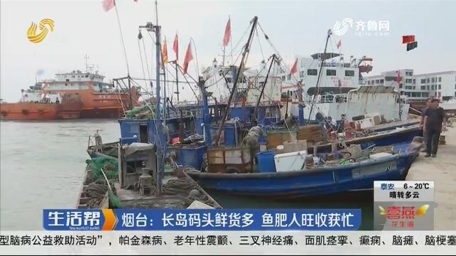 烟台:长岛码头鲜货多 鱼肥人旺收获忙