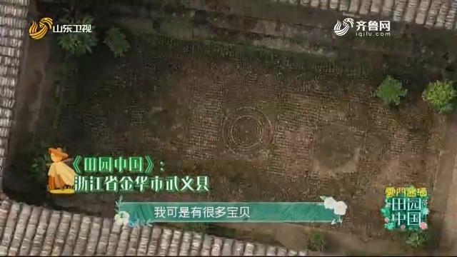 20201018《田园中国》:浙江省金华市武义县