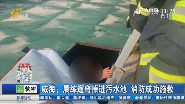 威海:晨練遛彎掉進污水池 消防成功施救