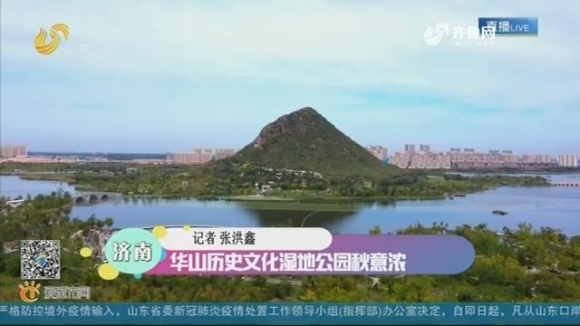济南:华山历史文化湿地公园秋意浓