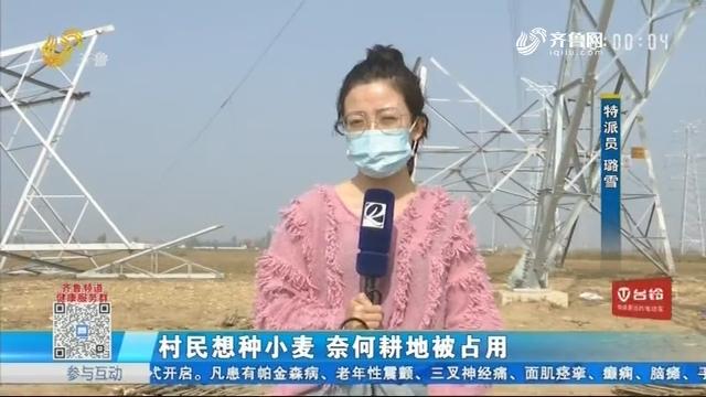 济南:村民想种小麦 奈何耕地被占用