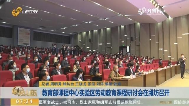 教育部课程中心实验区劳动教育课程研讨会在潍坊召开