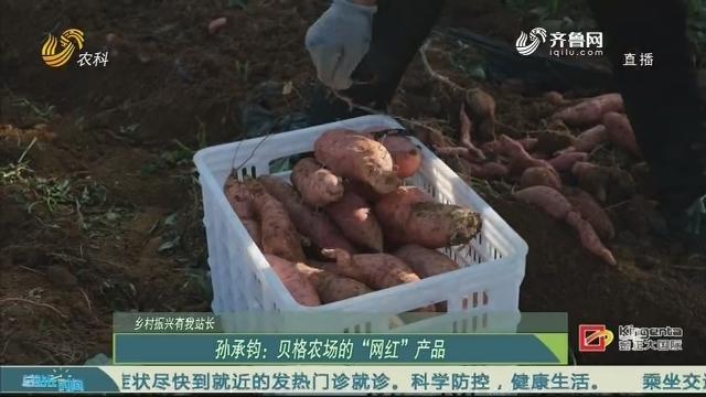 """20201025《总站长时间》:乡村振兴有我站长——孙承钧:贝格农场的""""网红""""产品"""