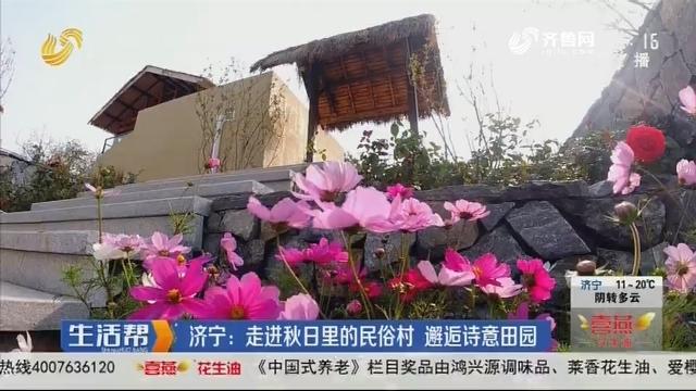 济宁:走进秋日里的民俗村 邂逅诗意田园