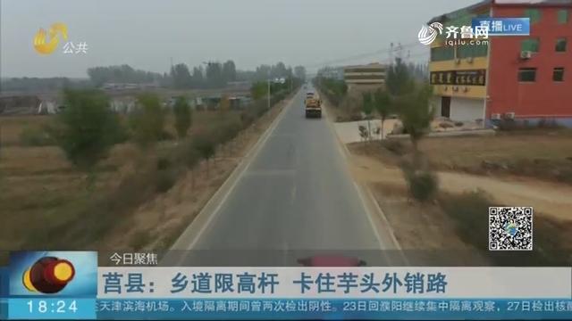【今日聚焦】莒县:乡道限高杆 卡住芋头外销路