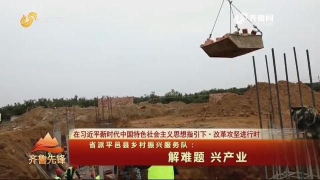 20201029《齐鲁先锋》:省派平邑县乡村振兴服务队——解难题 兴产业