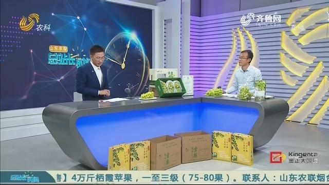 20201101《总站长时间》:乡村振兴有我站长——赵日江 张海霞 刘少东