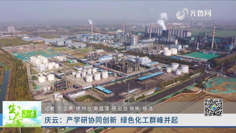 庆云:产学研协同创新 绿色化工群峰并起