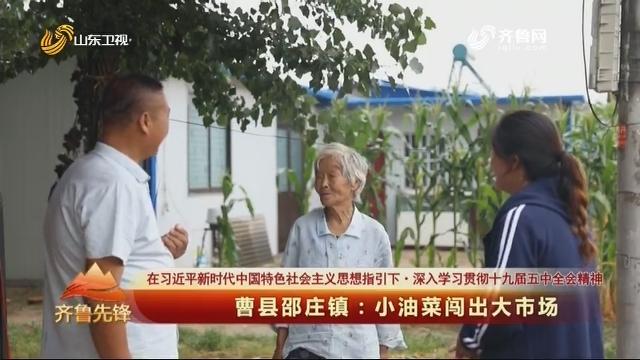 20201102《齐鲁先锋》:曹县邵庄镇——小油菜闯出大市场