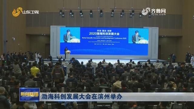渤海科创发展大会在滨州举办