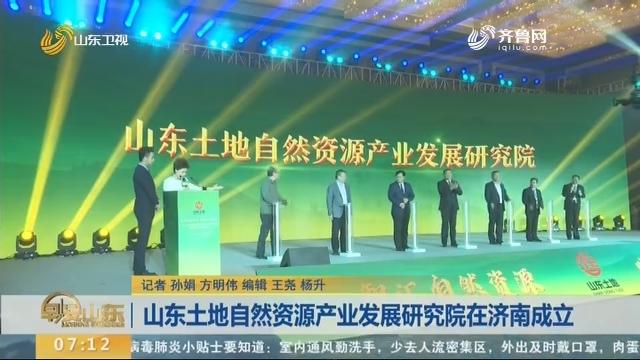 山东土地自然资源产业发展研究院在济南成立