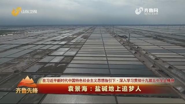 20201105《齐鲁先锋》:袁景海——盐碱地上追梦人