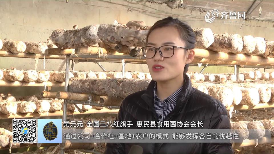 吴元元:朵朵蘑菇铺就致富路