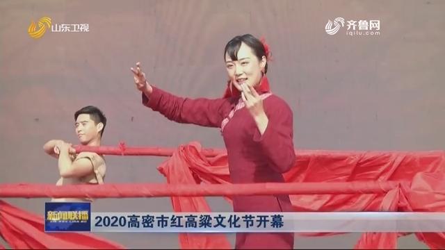 2020高密市红高粱文化节开幕