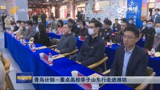 青鸟计划·重点高校学子山东行走进潍坊