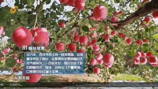 20201107《家乡好物》:烟台苹果