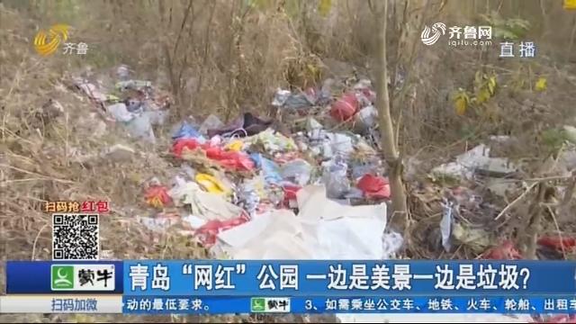 """青岛""""网红""""公园 一边是美景一边是垃圾?"""