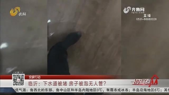 【安家行动】临沂:下水道被堵 房子被泡无人管?