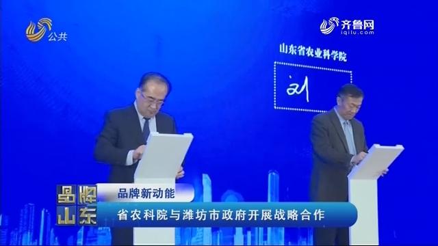 【品牌新动能】省农科院与潍坊市政府开展战略合作