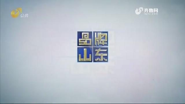 2020年11月08日《品牌山东》完整版