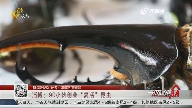 """【群众新观察】淄博:90小伙创业""""复活""""昆虫"""