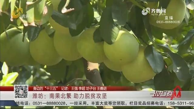 """【身边的""""十三五""""】潍坊:南果北繁 助力脱贫攻坚"""