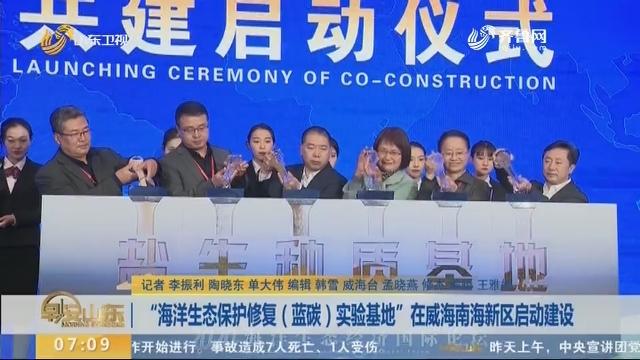 """""""海洋生态保护修复(蓝碳)实验基地""""在威海南海新区启动建设"""