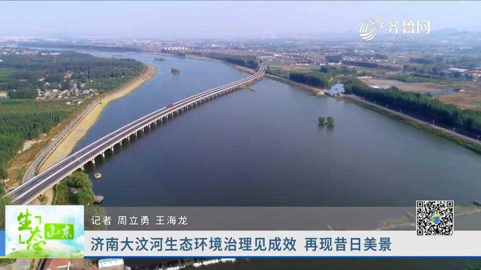 济南大汶河生态环境治理见成效 再现昔日美景