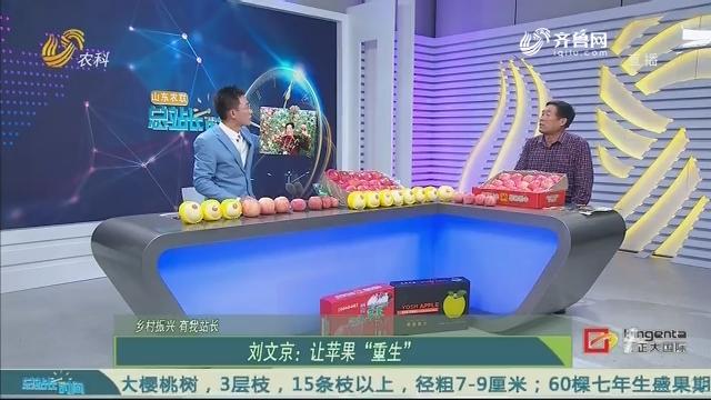 """20201115《总站长时间》:乡村振兴有我站长——刘文京:让苹果""""重生"""""""