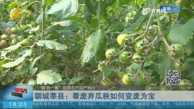 聊城莘县:看废弃瓜秧如何变废为宝