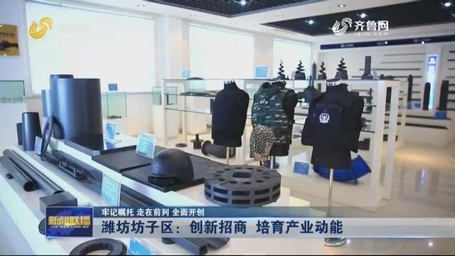 【牢记嘱托 走在前列 全面开创】潍坊坊子区:创新招商 培育产业动能