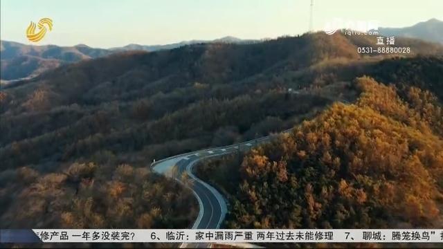 【深秋画卷 美丽山东】五莲九仙山北路:车在画中行 一路是景观