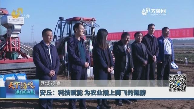 【县域观察】安丘:科技赋能 为农业插上腾飞的翅膀