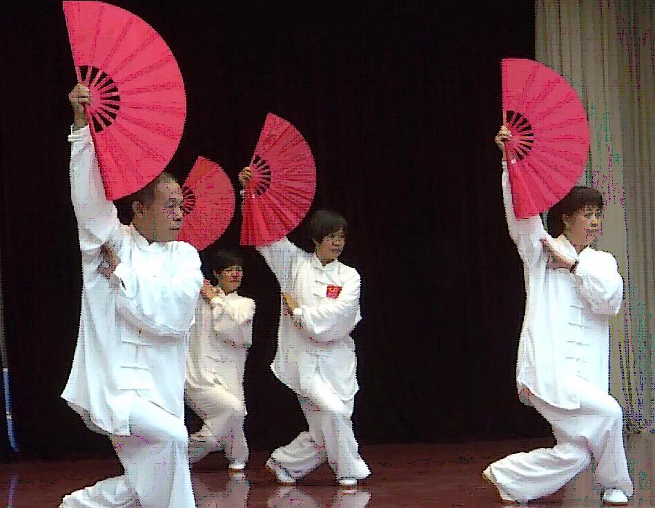 东营:利津县武术协会成立大会举行