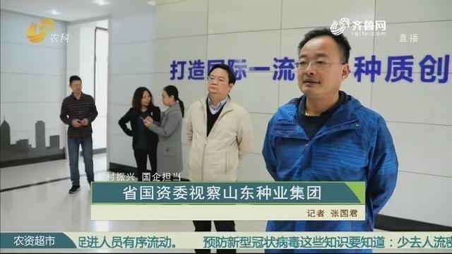 【乡村振兴 国企担当】省国资委视察山东种业集团