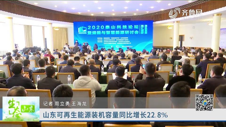 山东可再生能源装机容量同比增长22.8%