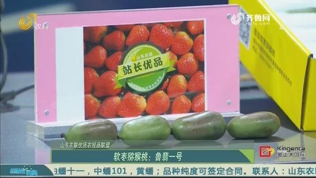 【山东农联优质农投品联盟】软枣猕猴桃:鲁翡一号