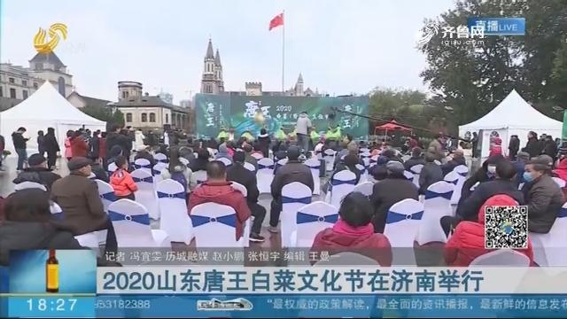2020山东唐王白菜文化节在济南举行
