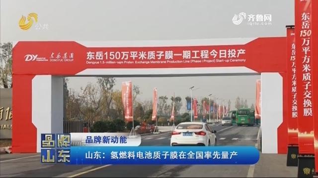 【品牌新动能】山东:氢燃料电池质子膜在全国率先量产