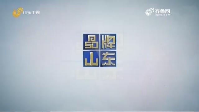 2020年11月23日《品牌山东》完整版