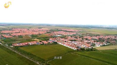 《齐鲁美丽乡镇》第十一期:山东省黄河三角洲农业高新技术产业示范区丁庄街道