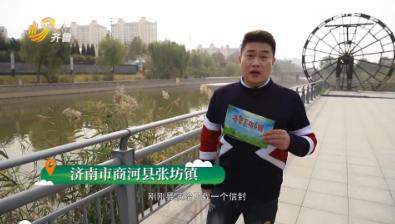 《齐鲁美丽乡镇》第十期:济南市商河县张坊镇