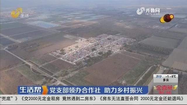 党支部领办合作社 助力乡村振兴