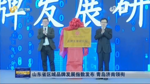 山东省区域品牌发展指数发布 青岛济南领衔