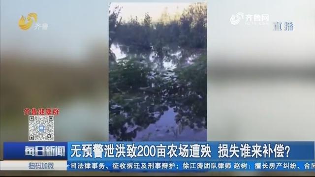 无预警泄洪致200亩农场遭殃 损失谁来补偿?